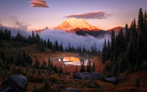Wallpaper USA, forest, stratovolcano, The cascade mountains, the sky, Mount Rainier, lake, Washington, fog, national Park, ...