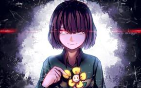 Picture flower, look, girl, Undertale