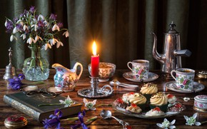 Picture flowers, style, coffee, candle, bouquet, glasses, snowdrops, book, irises, set, cupcakes, coffee pot