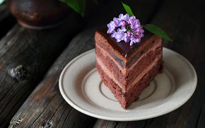 Picture chocolate, cake, lilac