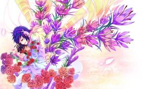 Picture flowers, anime, art, Durarara!!, The headless horseman, Of Izaya Orihara