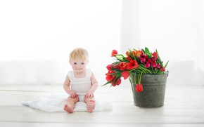 Picture girl, flowers, bucket, tulips