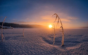 Wallpaper cold, winter, snow, sunset