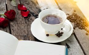 Picture petals, book, Tea