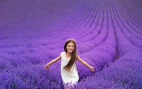 Picture field, flowers, nature, girl, lavender