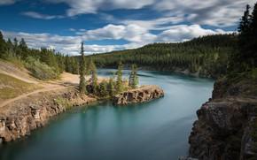 Wallpaper forest, river, Canada, Yukon River, Yukon, Canada, Canyon Miles, Miles Canyon, The Yukon River, Yukon