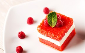 Picture raspberry, cream, dessert, cream, milk, vanilla, panna cotta