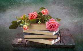 Picture flowers, Board, books, roses, shell