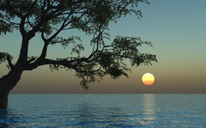 Picture water, the sun, sunset, nature, tree