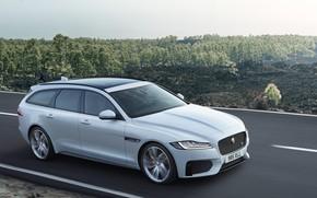 Picture road, white, the sky, trees, movement, Jaguar, universal, XF Sportbrake 25d AWD