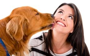 Wallpaper joy, mood, girl, white background, brunette, Retriever, red, dog