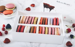 Picture box, cookies, set, macaroon