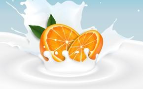Wallpaper milk, citrus, orange, background