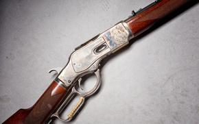 Picture macro, rifle, Winchester