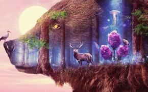 Picture bear, surrealism, art, deer