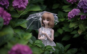 Picture umbrella, doll, hydrangea