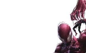 Picture Costume, Hero, Comic, Superhero, Hero, Marvel, Villain, Spider-man, Comics, Spider-Man, Peter Parker, Peter Parker, Carnage, …