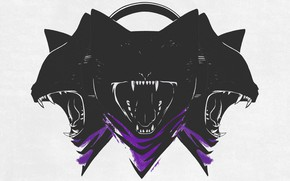 Picture music, house, hardstyle, techno, drum and bass, Electronic, dubstep, hardcore, breakbeat, trap, MONSTERCAT, future bass, …