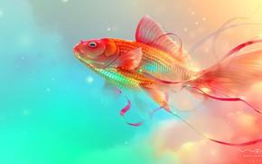 Picture tape, fish, Wanderlust