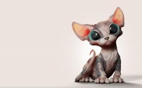 Picture baby, art, kitty, Sphinx, Marcos Nicacio, Sphynx Kitten