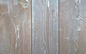 Picture wallpaper, wall, wood, texture, background, board, wooden wall, wooden board