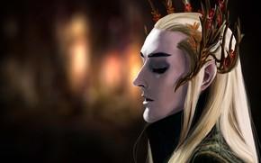 Picture elf, male, The hobbit, Thranduil