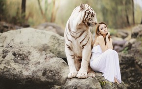 Picture white, girl, nature, tiger, stones, mood, the situation, dress, friendship, Asian, sitting