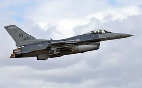 Picture flight, fighter, F-16CM