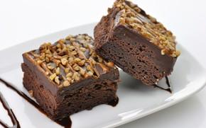 Wallpaper cake, nuts, dessert, cakes, chocolate, Chocolate, dessert, Nutty