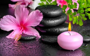 Picture flowers, Spa, background, Spa, candles, spa stones