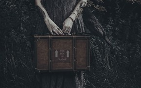 Picture hands, suitcase, crow, Lucz Anne Fowler