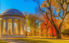 Picture autumn, leaves, the sun, trees, Park, yellow, Washington, USA, memorial