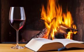 Picture fire, book, vine