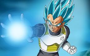 Picture DBS, alien, anime, power, martial artist, warrior, manga, powerful, Dragon Ball, strong, shounen, Dragon Ball …