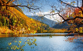Picture autumn, forest, the sky, leaves, the sun, clouds, trees, mountains, branches, lake, yellow, China, reserve, ...