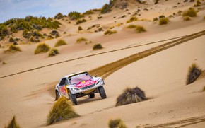 Picture Sport, Speed, Race, Dirt, Peugeot, Lights, Red Bull, Rally, Dakar, Dakar, Rally, Sport, DKR, 3008, …