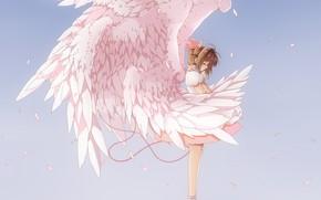 Picture the sky, wings, angel, anime, art, girl, Card Captor Sakura, Sakura - collector cards