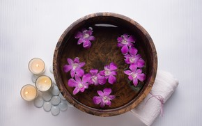 Picture flowers, stones, candles, Spa