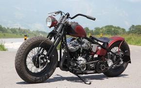 Picture Bike, Custom, Motorbike, Motorcycle, Bobber