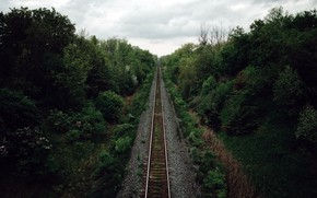 Picture forest, nature, railroad