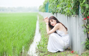 Picture girl, woman, asian, Field