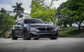 Picture BMW, Gray, Sight, LED, F83