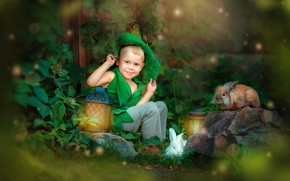 Picture animals, nature, stone, tale, boy, lights, costume, rabbits, child