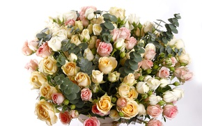 Picture roses, bouquet, buds, chic, Bouquets