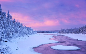 Picture river, The sky, Nature, Winter, Snow, Spruce, Finland, Lapland