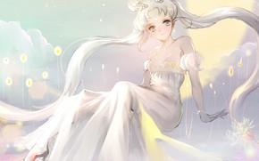 Picture anime, art, the bride, Sailor Moon, kodomo no hi, Magical girl, Magical girl, Sailor Moon, …