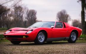 Picture Color, Auto, Yellow, Lamborghini, Machine, Classic, Lights, Car, 1967, Supercar, Lamborghini Miura, P400, Lamborghini Miura …