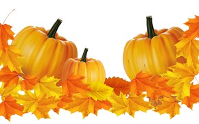 Picture autumn, leaves, pumpkin, vector graphics