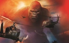 Picture The film, Movie, Kong: Skull Island, King Kong: Skull Island