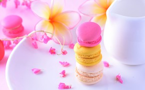 Picture flowers, the sweetness, tape, cake, cakes, plumeria, macaroon